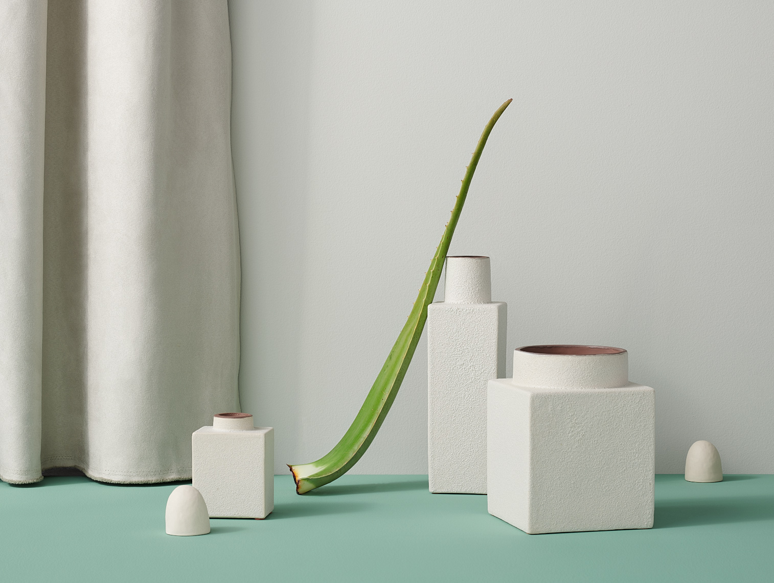 Aloe plant with white textured CB2 vases on green surface still life photo in Minneapolis Minnesota